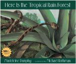Here Is the Tropical Rainforest book cover